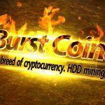 burst coin kaufen