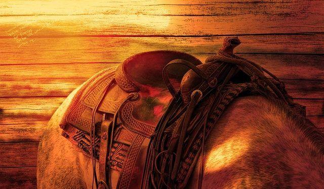 Pixabay.com / Horse Saddle