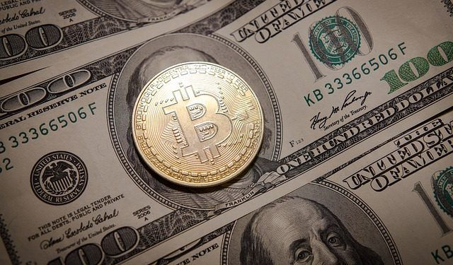 petrebirlea / Pixabay.com / US Dollar, Bitcoin