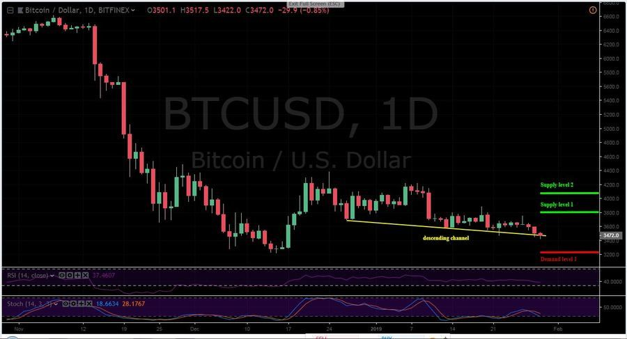 BTC -USD 1D Chart - January 29