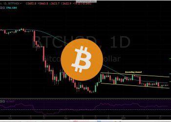BTC-USD 1D - January 25 copy. Bears are in play