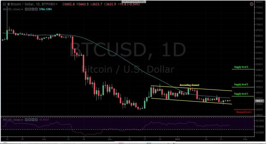 BTC-USD 1D - January 25