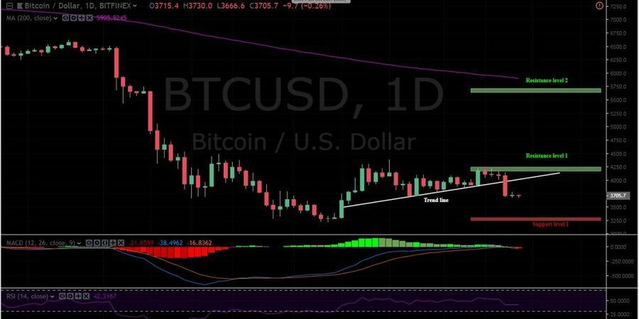 BTC/USD 1 Day Chart, Bitfinex.