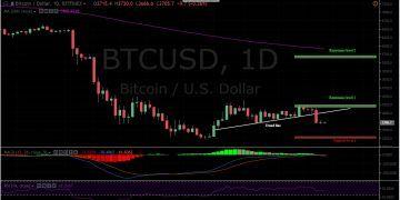 BTC/USD 1 Day Chart, Bitfinex.