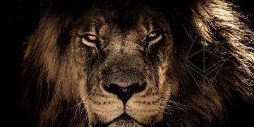 Pixabay.com / Lion / Ethereum Logo