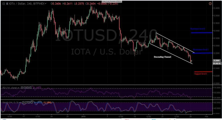 IOTA-USD 4H Chart - January 28