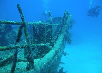 neverzola / Pixabay.com / Diving