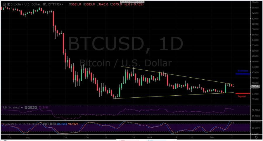 BTC-USD 1D - February 12
