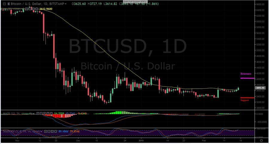BTC-USD 1D - February 18