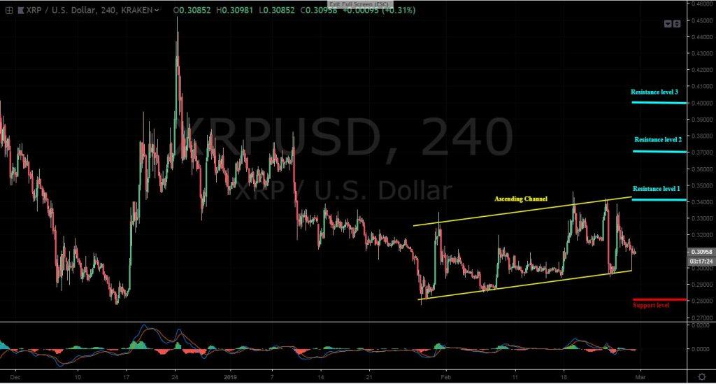 XRPUSD, 4H chart - February 28