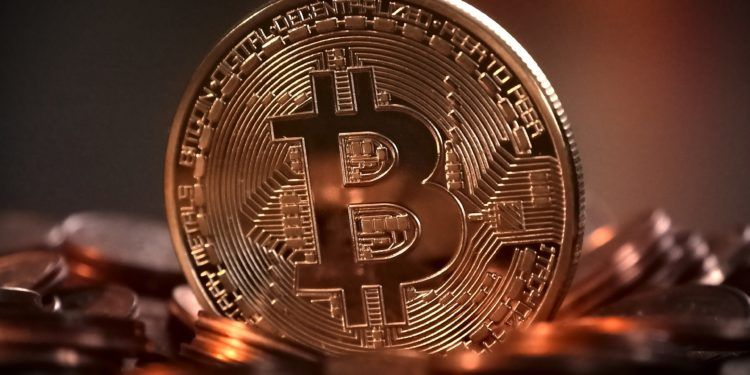 Interest Bearing Accounts Are Providing Refuge to Crypto Diehards