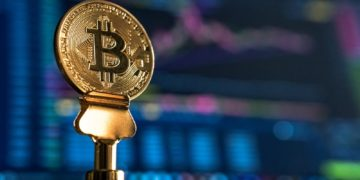 Crypto Insurance Is Growing At an Unprecedented Rate