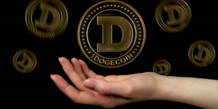 Dogecoin is a long term investment