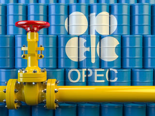 OPEC+ vows to cut down supply further to rebalance the supply and demand in the oil market