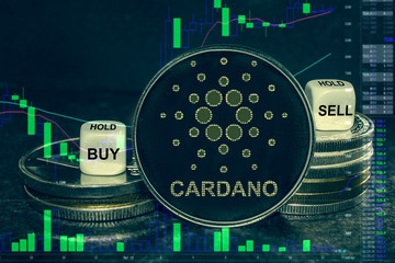 Many say that Cardano might be a good investment in 2020