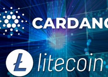 Litecoin and Cardano are good investments in the longterm