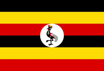 Binance to delist BNB coin from its Uganda platform