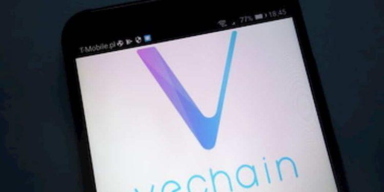 Vechain blockchain is gaining mass adoption gradually