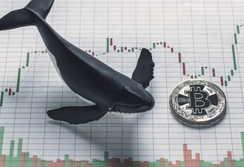 Whales Sold 140K Bitcoin In February – Glassnode