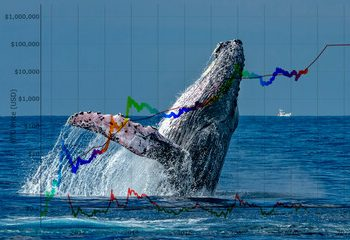 Bitcoin Whales Bought The Dip, Orders For $100K Hit New Highs