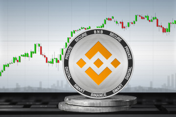 Binance Coin Is Surging Rapidly, Could A Crash be Looming?