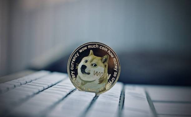 DOGE Adopts New Tricks As Dogecoin Price Exceeds $0.50