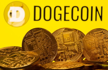 TikTokers And Sports Fans See Use Case For Dogecoin, Internet Money?