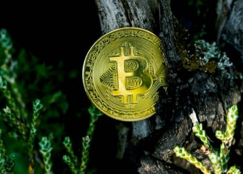 Bitcoin Forms Another Higher-High, Is $50K Within Reach This Weekend?
