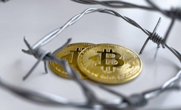 Dutch Official Wants Bitcoin Banned Completely