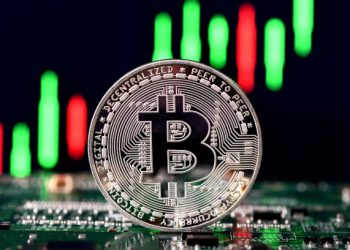 Bitcoin Surges Above $50,000 For The First Time In Three Months
